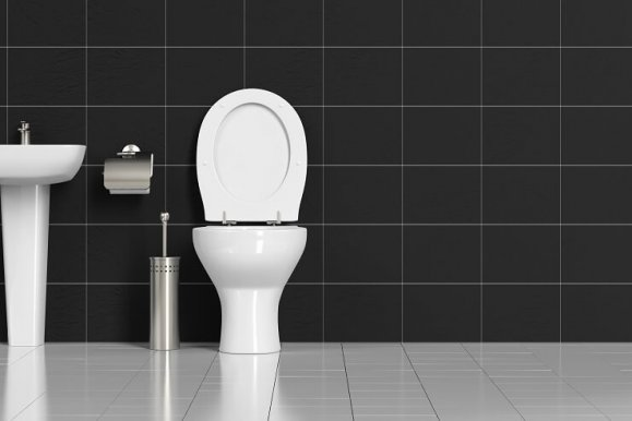 Best flushing toilet – 2019 Reviews & Buying Guide